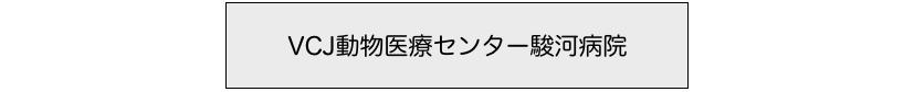 小田原から静岡県御殿場市の動物病院へ